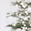 Thumbnail: Nordic Winter