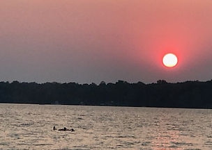 Loons on Lake.JPG