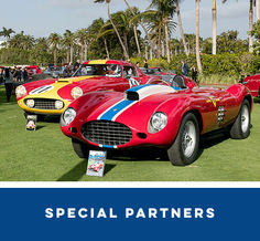 A line of classic and new Ferraris with a charter jet in the background.
