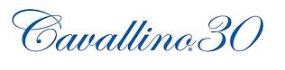 2021---Logo-30-Blue-v2.png
