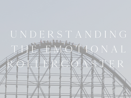 understanding the emotional rollercoaster