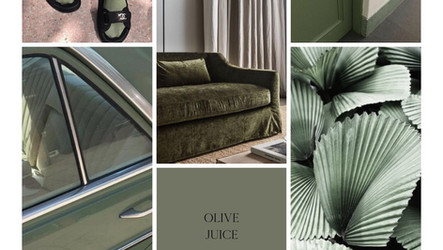 TREND REPORT  |  COLOUR  |  OLIVE