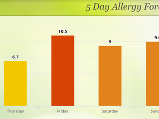 My Personal Story with Allergies and Chiropractic