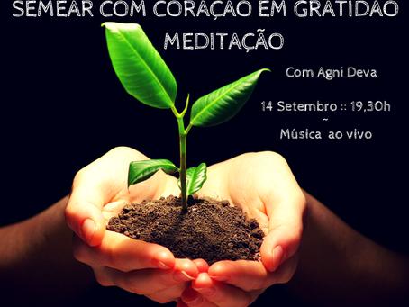 Semear c/ Coração em Gratidão :: Meditação (14 Set.) ::                              Zen Shiatsu (se