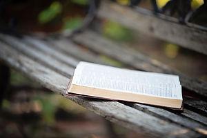 Bible-on-bench.jpg