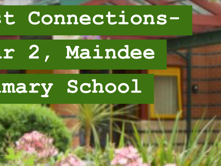 'Year 2' by Maindee Primary