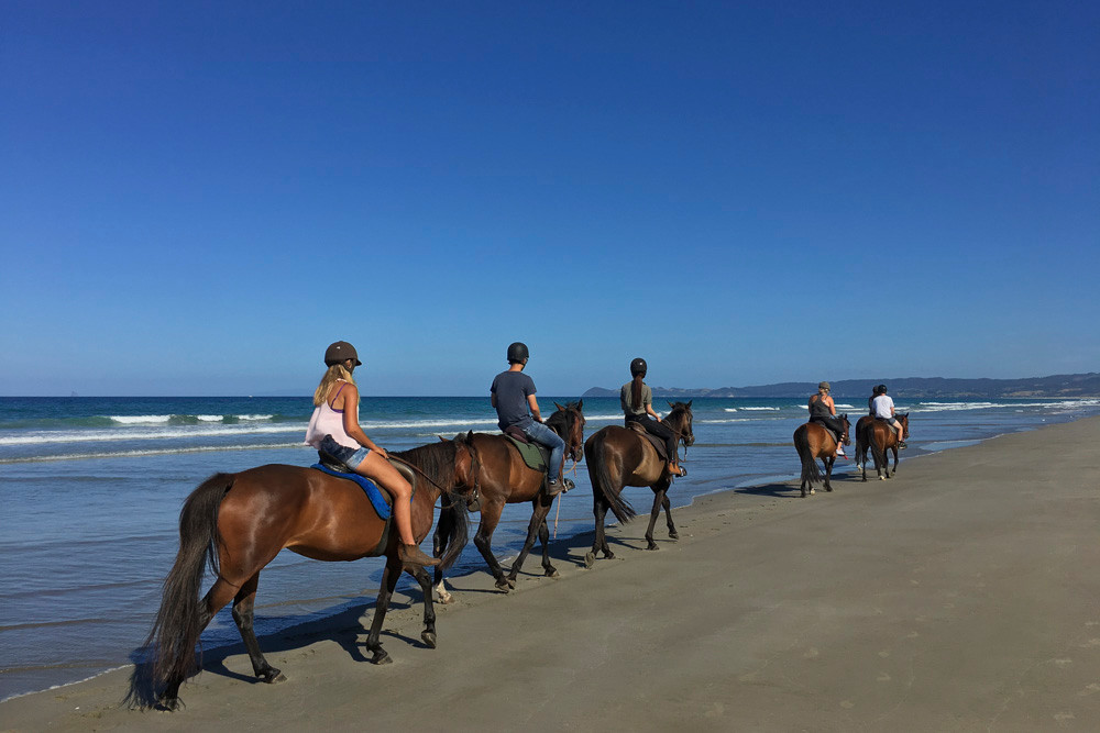 Horse riding along Uretiti beach. You'd never guess there is an oil refinery at the other end of this beach. Only in NZ!