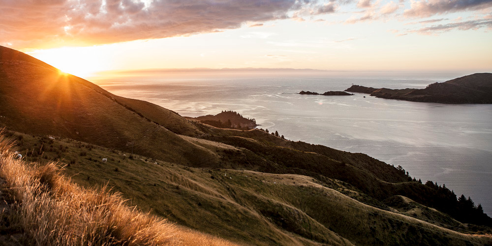 the Sounds in the South Island simply take your breath away