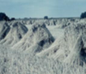 Getreidepuppen-1968.jpg