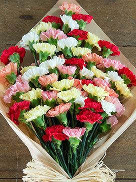 Crazy Carnations