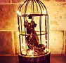 Caged Dragon Night Light _#dragonart #dr