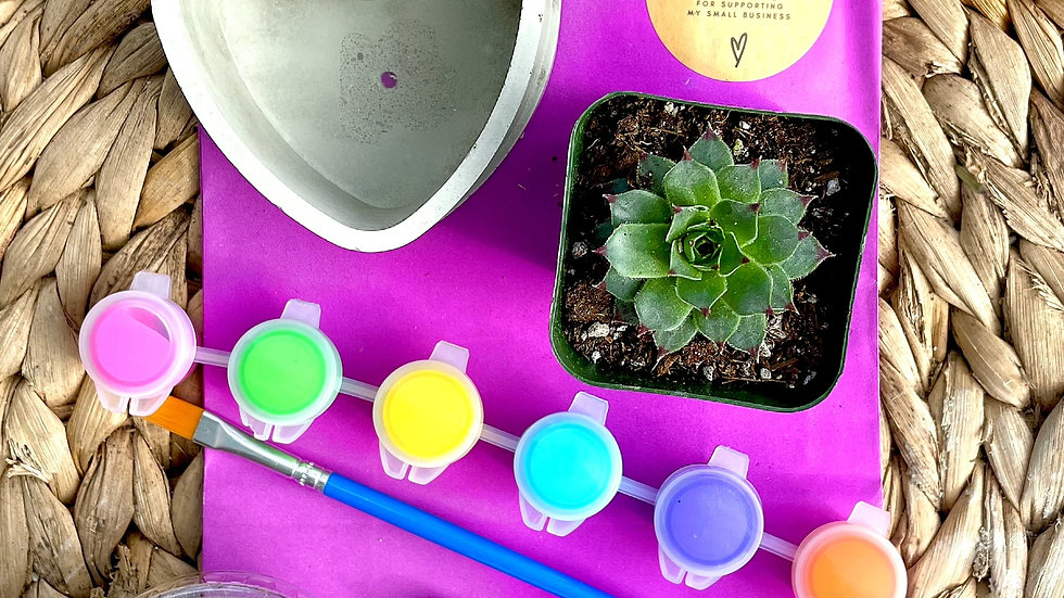 Small Heart Paint and Pot Kit