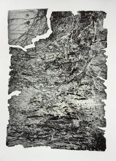 Eau-forte, vernis mou, découpe à l'acide, 2016