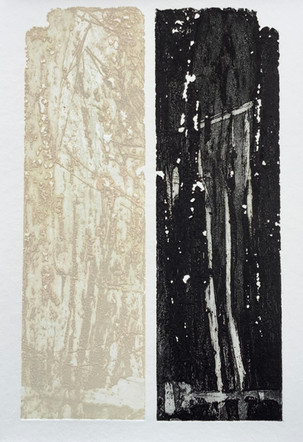 Eau-forte, aquatinte, encrage en couleur,  2016