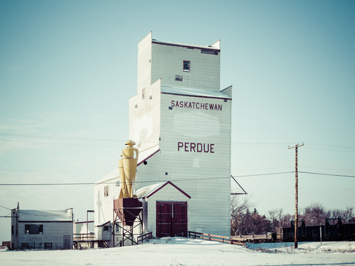 Pittman: Perdue Farms grain elevator closure unnecessary assault on AAC farmers