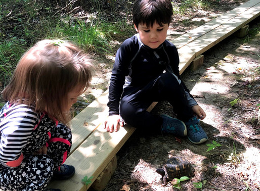 Forest School: You can get outside safely