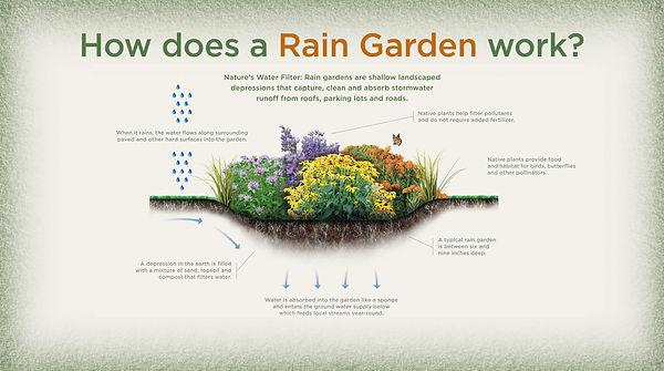 Rain Garden 2_NJTNC.jpg