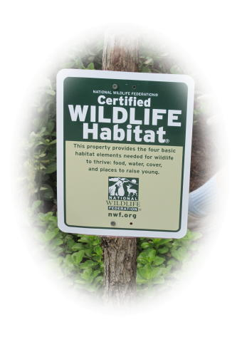 Wildlife Habitat.jpg