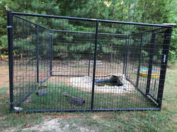 Turtle Cage
