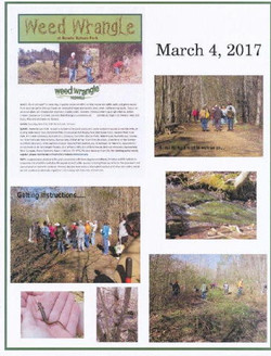 WeedWrangle2017 at Bowie Nature Park