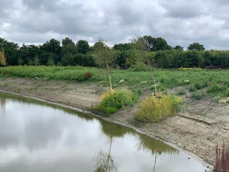 Natuurbegraven in Noord-Holland