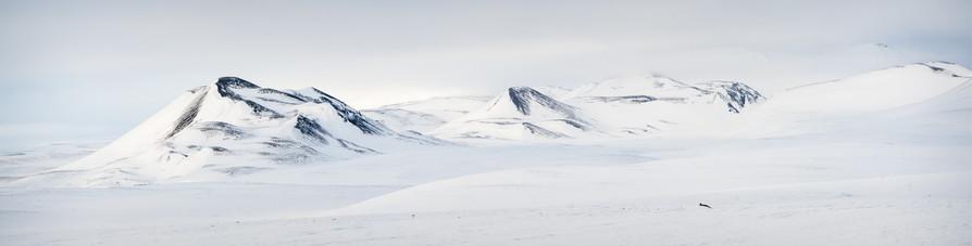 Winter Snowscape.jpg