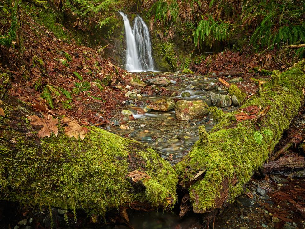 Hidden Spring Falls-3.jpg