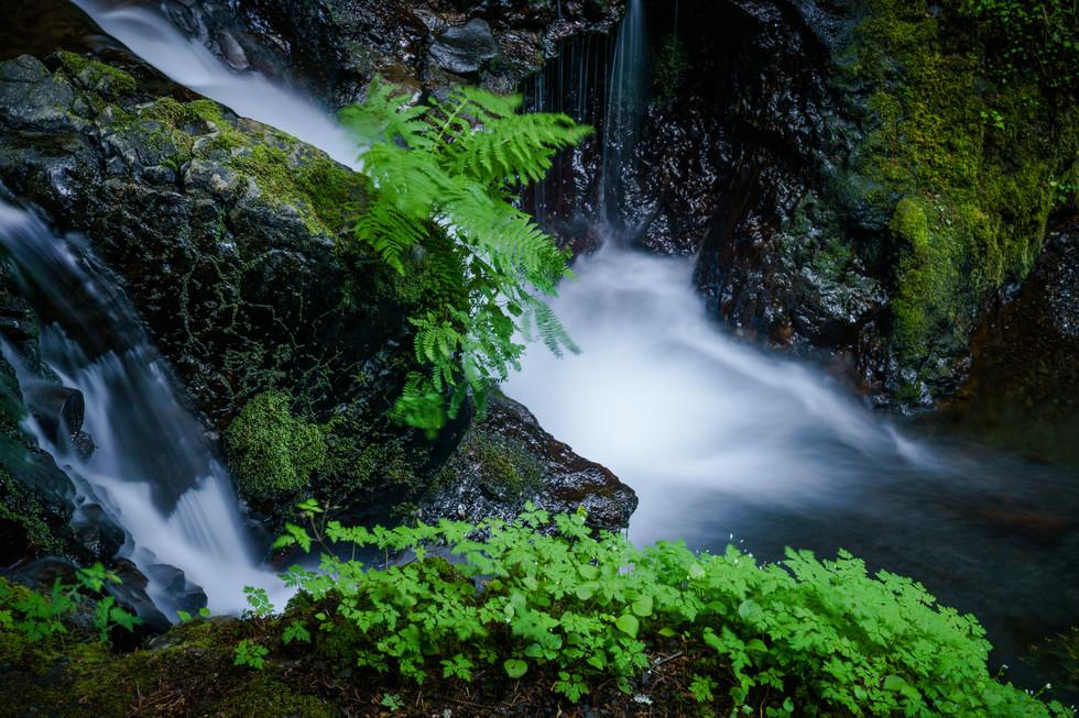 Emerald Falls.jpg