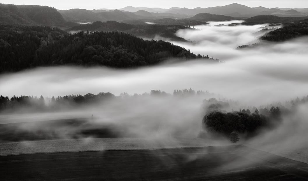 Rolling Fog in Bohemian Switzerland.jpg