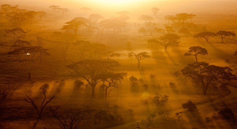 Sunrise over the Serengeti.jpg