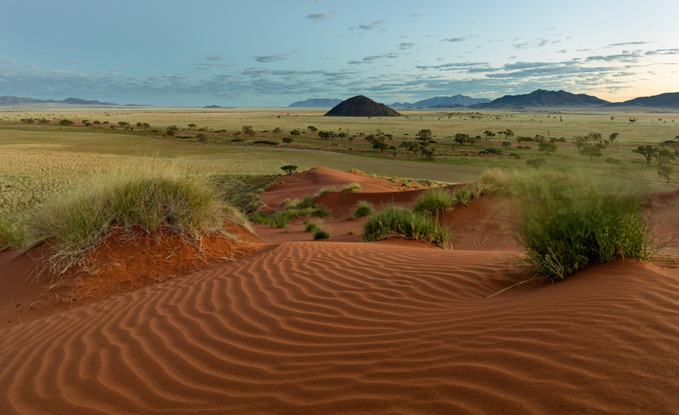 Dunes of the Namib Rand.jpg