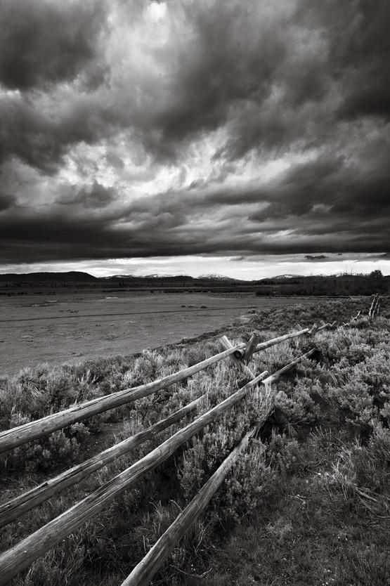 Fence Line.jpg