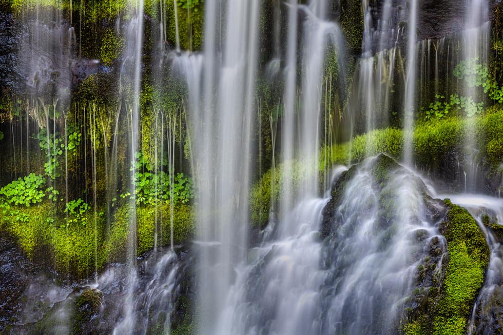 Cascades and Greens.jpg