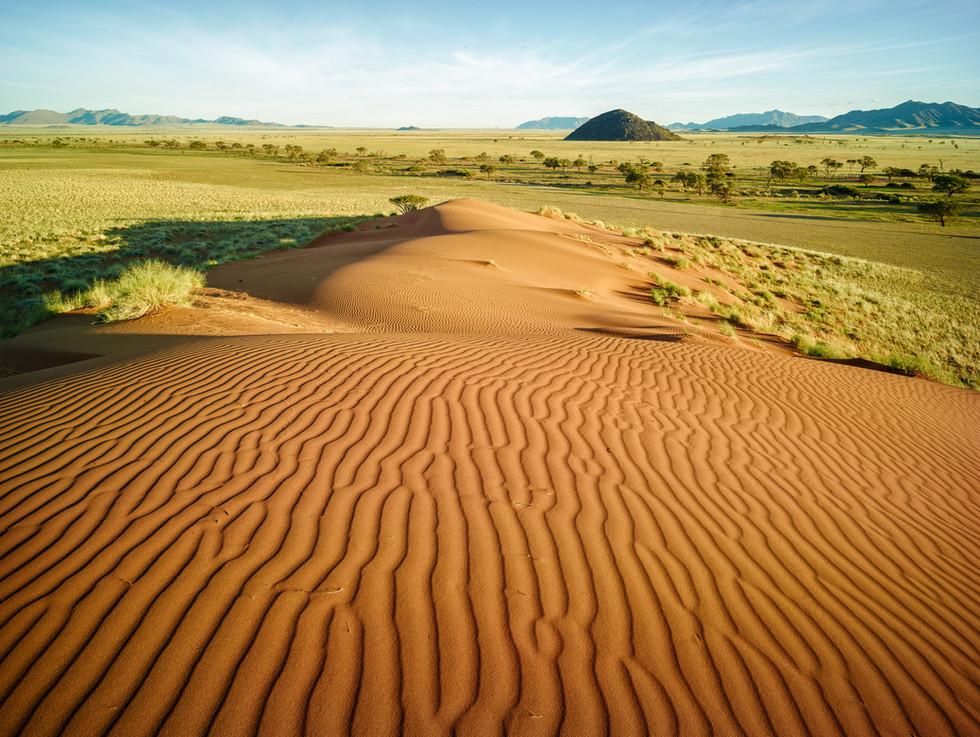 Dune Lines.jpg