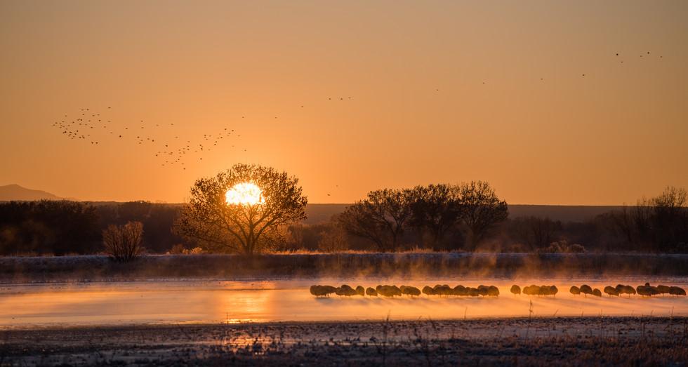 Freezing Sunrise.jpg