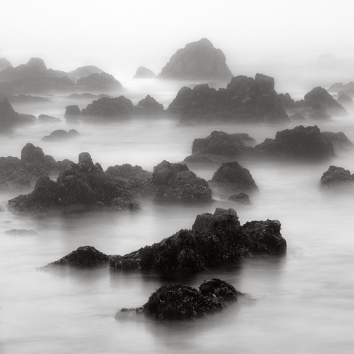 Misty Morning on Asilomar Beach.jpg