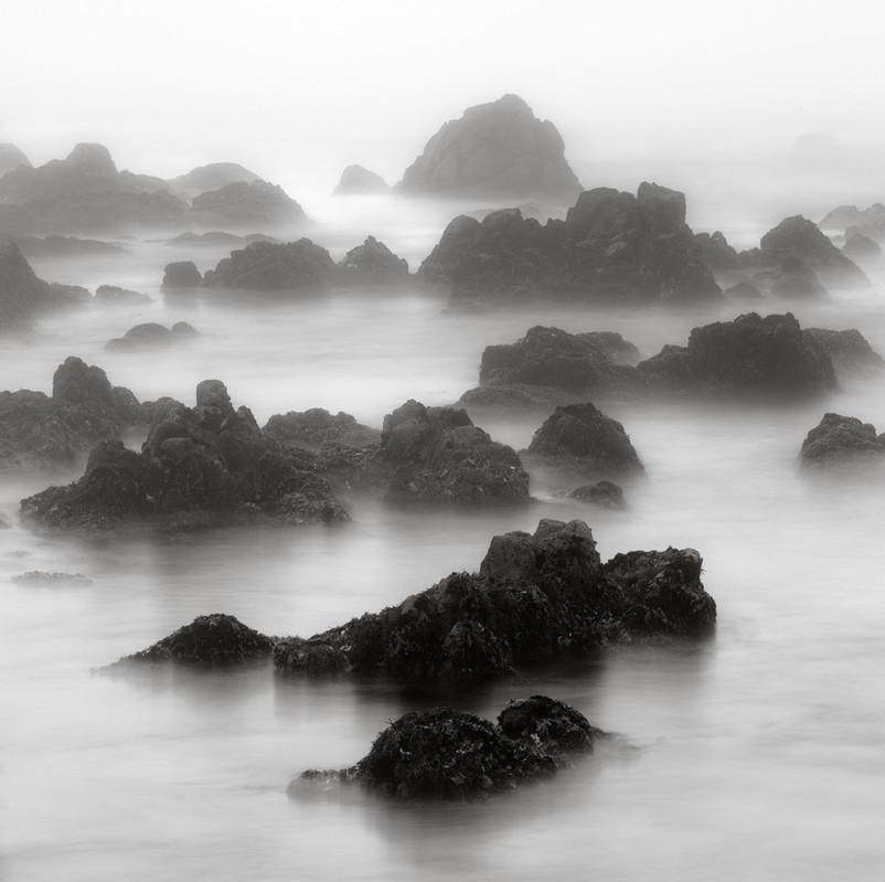 Misty Morning on Asilomar Beach.jpg