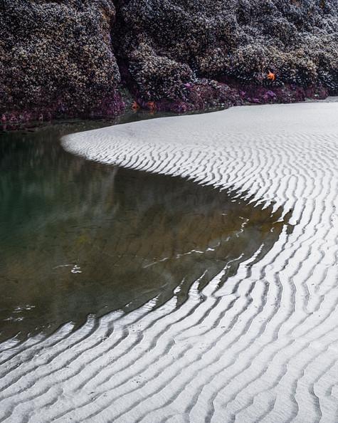 Tidal Ripples.jpg