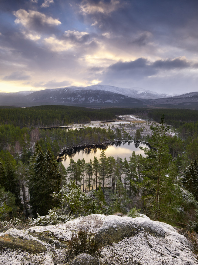 Early Morning Snow in the Cairngorms.jpg