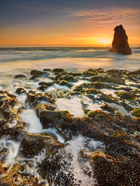 Surf and Sunset.jpg