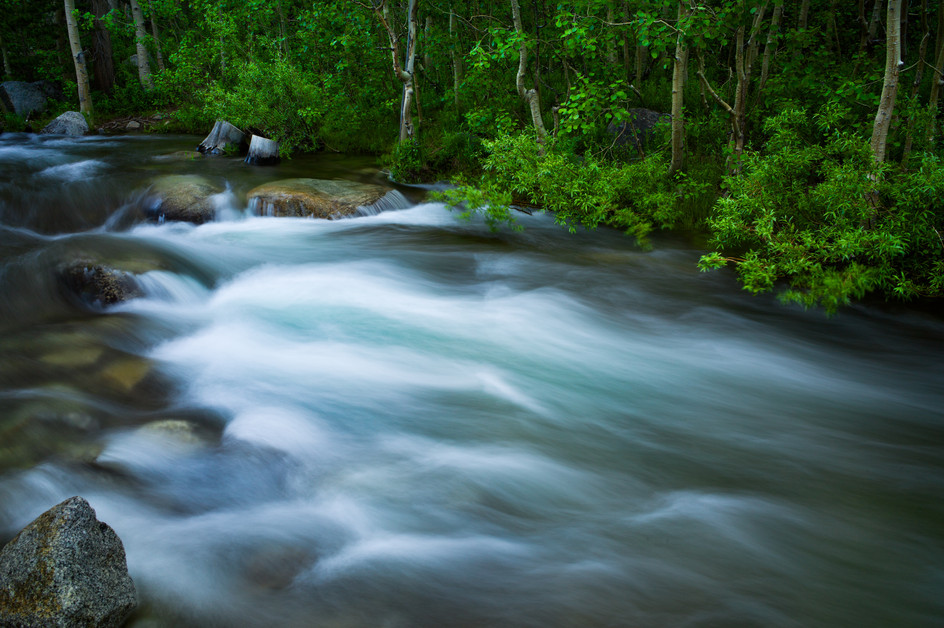 The River Rushes.jpg