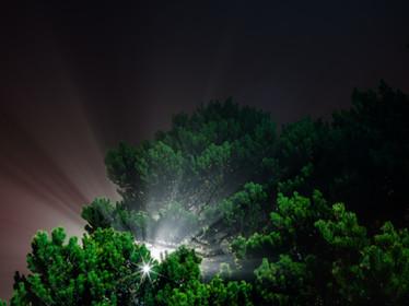 Search Light.jpg