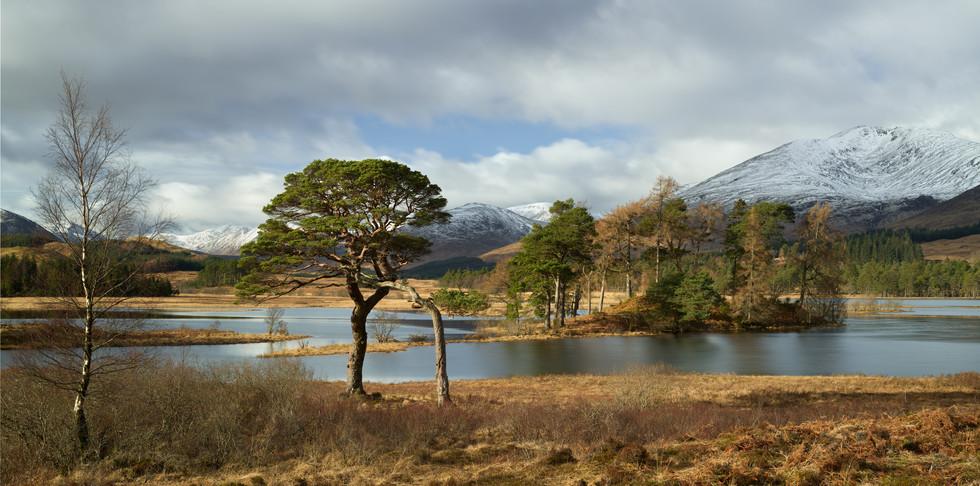 Soft Light over Loch Tulla.jpg