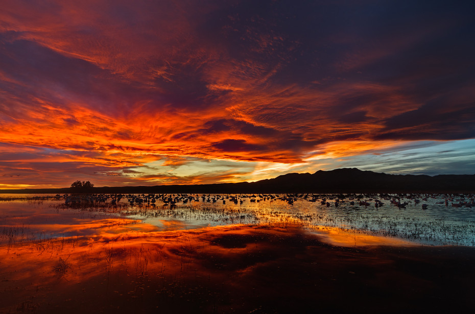 Fire in the Sky.jpg
