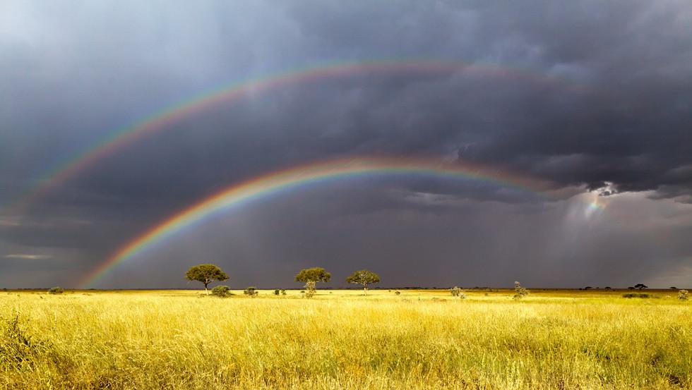 Serengeti Storm.jpg