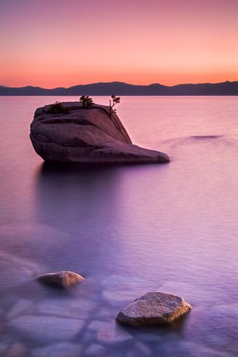 Bonsai Rock Sunset.jpg