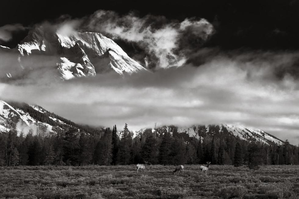 Under the Teton.jpg