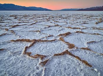 Patterns of Salt and Mud.jpg