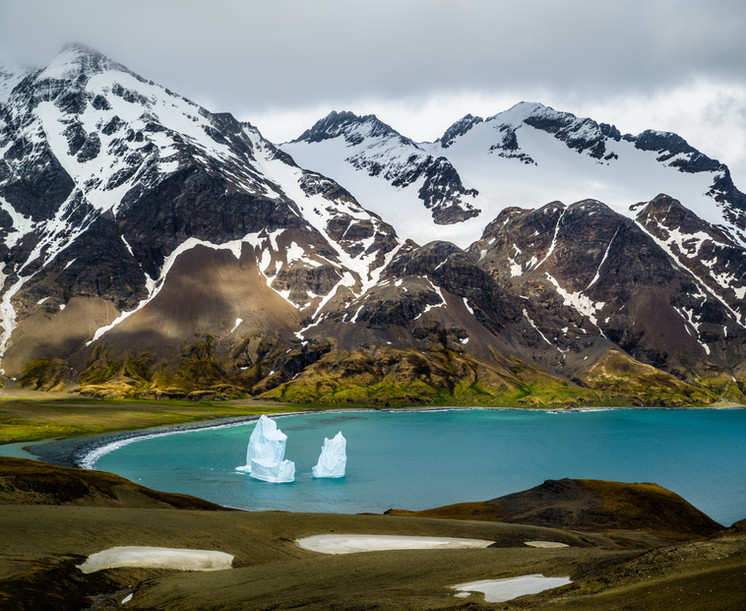 Icebergs in Fortuna Bay.jpg