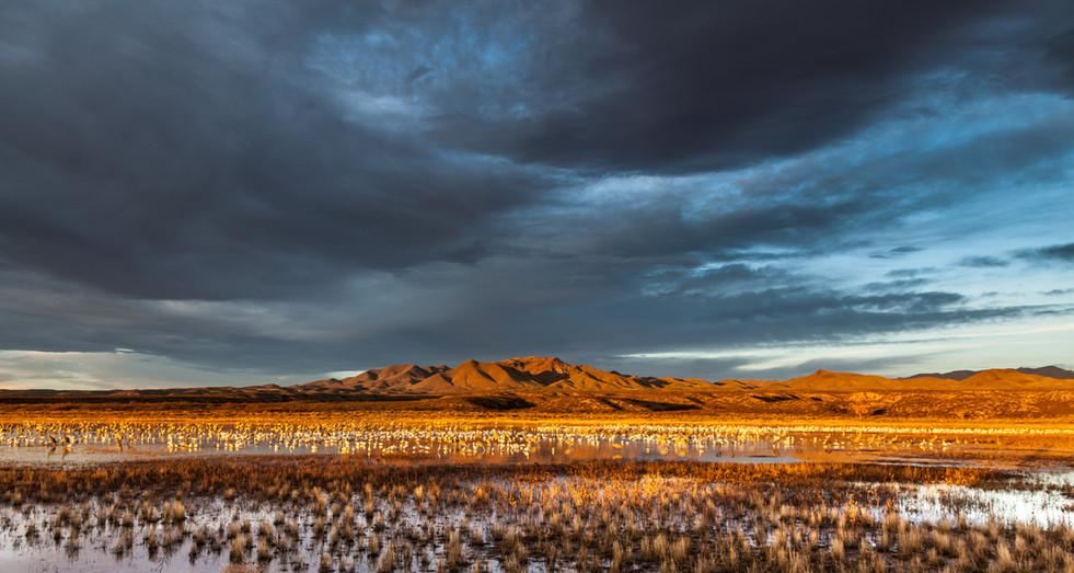 New Mexico Dawn.jpg